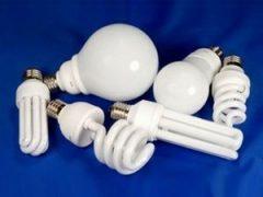 Открыть свой бизнес. Идеи ремонта энергосберегающих ламп
