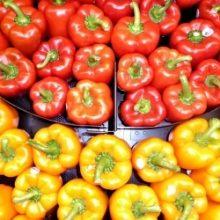 Консервирование болгарского перца