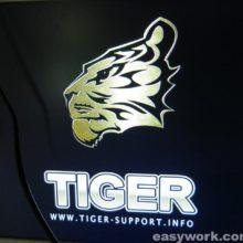 Ремонт спутникового ресивера TIGER F1 HD (на табло 8:8)