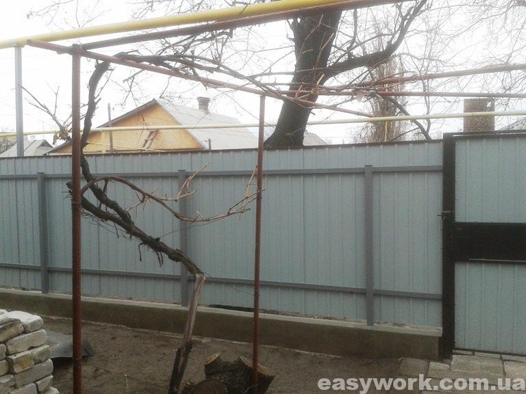 Забор из профнастила (вид изнутри) фото 2