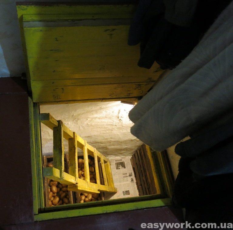 Погреб в доме родителей (фото 1)