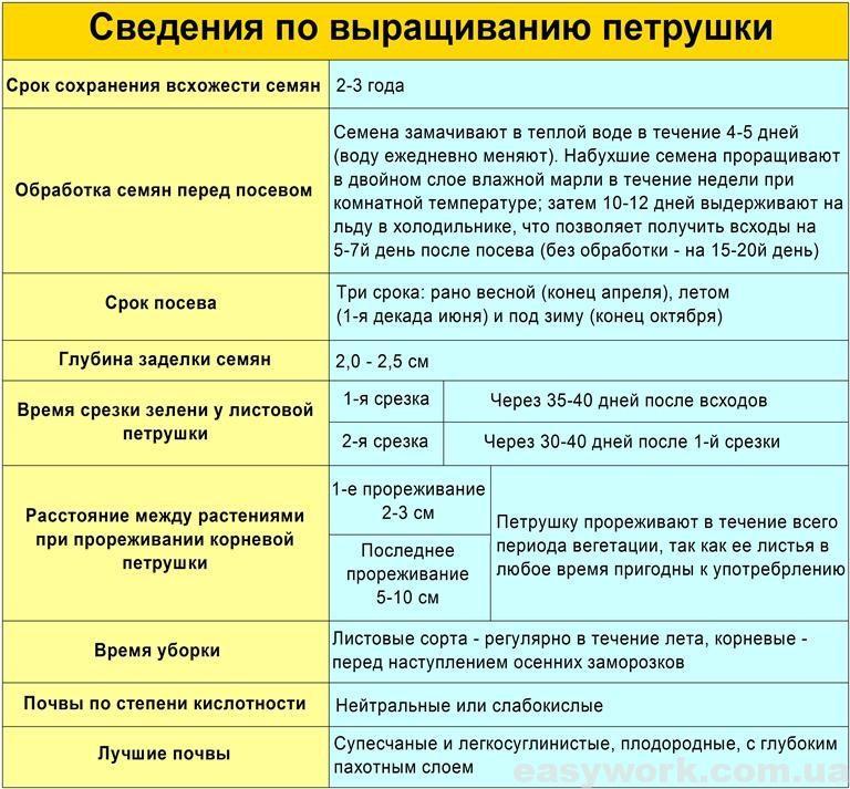 Сведения по выращиванию петрушки (таблица)
