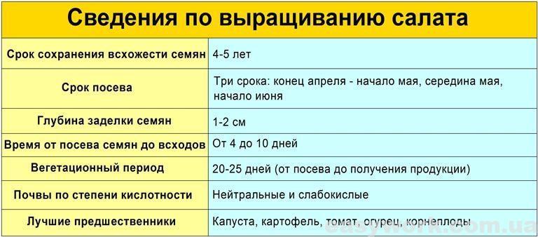 Сведения по выращиванию салата (таблица)