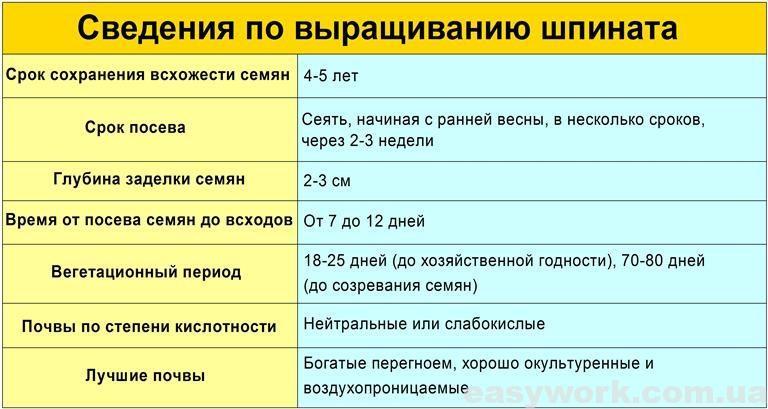 Сведения по выращиванию шпината (таблица)