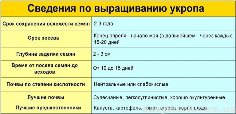 Сведения по выращиванию укропа (таблица)