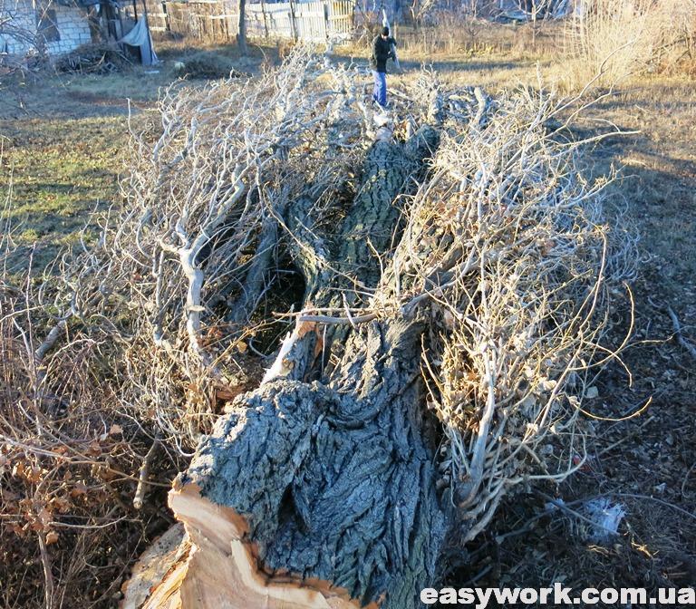 Разборка дерева