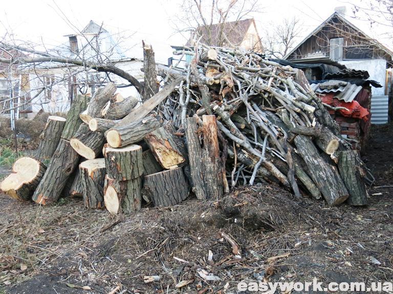Уложенные дрова из тополя