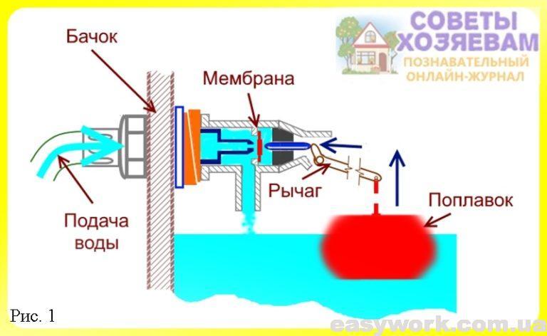 Строение мембранного клапана