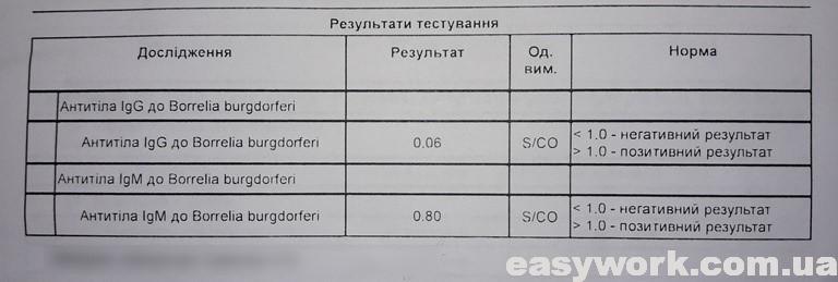 Результаты анализа крови после укуса клеща (фото 1)